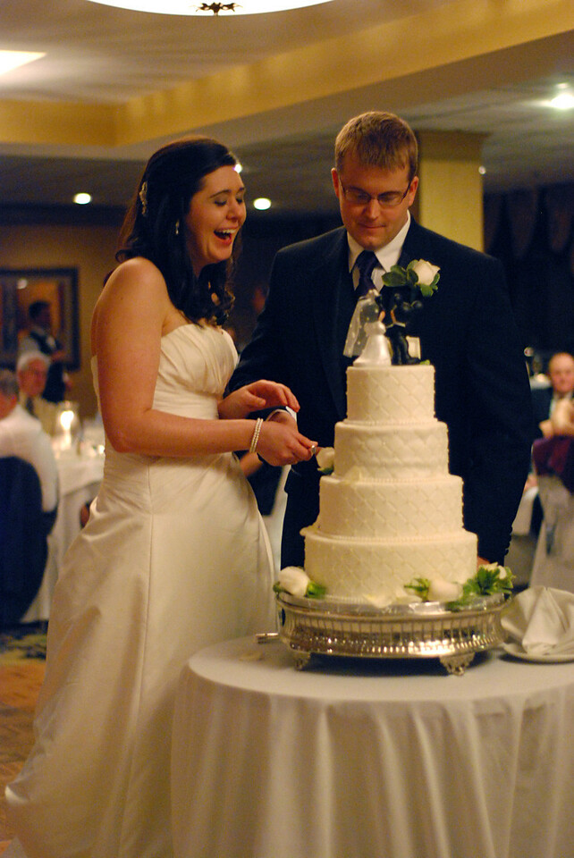 Joe and Erin's Wedding (Jan. 22, 2010)
