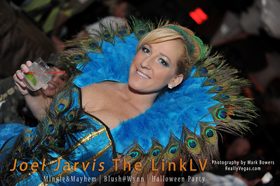 Joel Jarvis The LINKLV Mingle Mayhem Party at Blush Nightclub in the Wynn Casino Las Vegas photograph by Mark Bowers