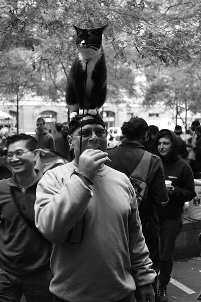 """The diversity of the Occupy Wall Street resistant movement is reminiscent of the 1963 March on Washington. The one of the goals of Occupy Wall Street is to combat corporate greed and corruption that has lead to the downturn of the United States economy. One of their slogans is, """"We are the 99% that will no longer tolerate the greed and corruption of the 1%""""."""