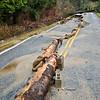 SRP_1242_Comcast Lake Samish Flood_Lake Samish Road Flood