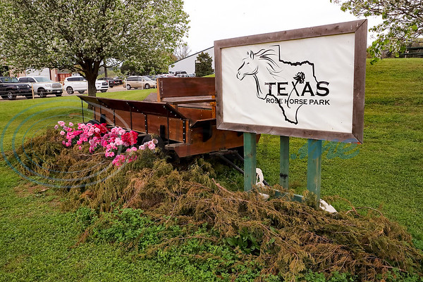 Texas Hunter & Jumper Association is holding an event at Tyler Rose Horse Ranch this weekend, Northwest of Tyler, on Highway 110. (Lang White / Correspondent