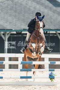 jumping-6179