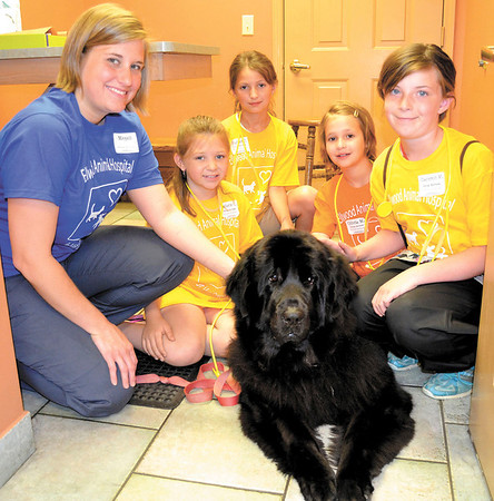 "Mary Grzebieniak/NEWS<br /> Vet tech Megan Munyon shows a group how to pet ""Duchess."" From left are Melanie Carlin of Beaver, Parker Jendrysik, of Union Township, Olivia Morrow of Ellwood City and Cameron White of Grove City."