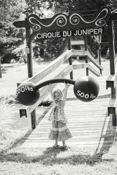 Juniper's Circus Birthday