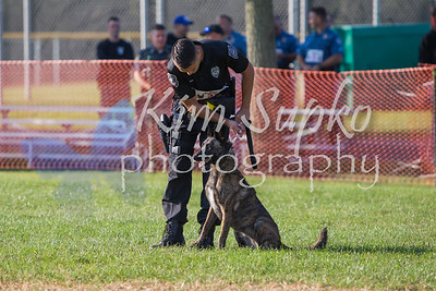 K9 Field Training
