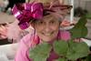 rhubarb festival 2013-18