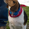 08 02-24 Doggie Olympics 14