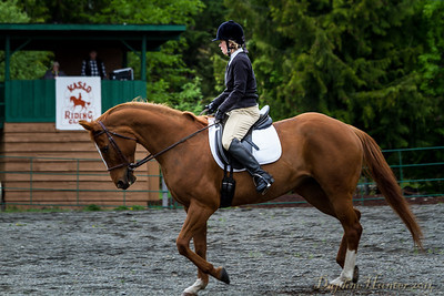 Dressage' demonstration