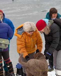 2016 Polar Plunge-0853