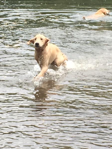 kayaking may 12, 2015