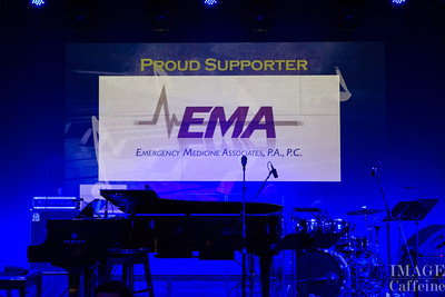 Music and Medicine-Virginia Hospital Center Foundations's 5th Annual Benefit at Hamilton