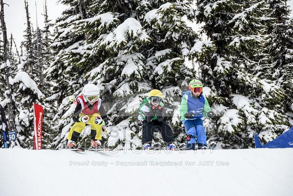 ski&boardcross feb7-14