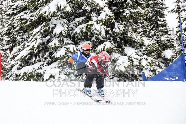 ski&boardcross feb7-17