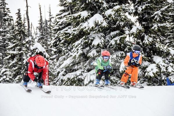 ski&boardcross feb7-16