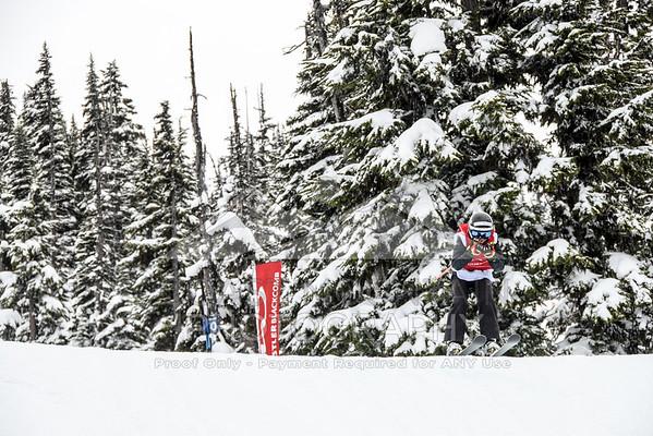 ski&boardcross feb7-19