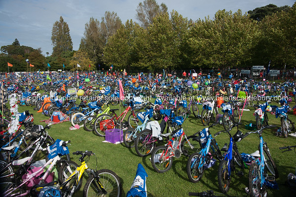 "Weetbix Kids Tryathlon, 2012,Tauranga's  Memorial Park.Bicycles in the bike transition area. ALSO SEE; <a href=""http://www.blurb.com/b/3811392-tauranga"">http://www.blurb.com/b/3811392-tauranga</a>"