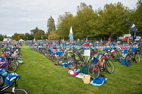 "Weetbix Kids Tryathlon, 2012,Tauranga's  Memorial Park.Bicycles in the bike transition area. ALSO SEE; <a href=""http://www.blurb.com/b/3811392-tauranga"">http://www.blurb.com/b/3811392-tauranga</a>"