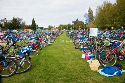 Weetbix Kids Tryathlon, 2012,Tauranga's  Memorial Park. Bicycles in the bike transition area. ALSO SEE; http://www.blurb.com/b/3811392-tauranga