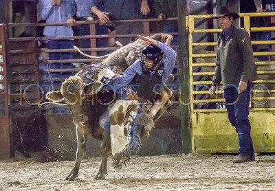 Kissimmee Rodeo Dec 19th 2014