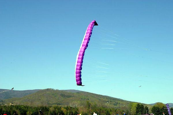 Kite Festival 20050416