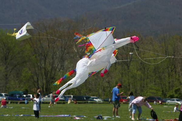 Kite Festival 20070421