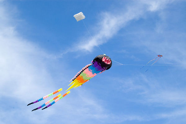 """<font size=""""3"""">This kite has another smaller kite to help keep it's head held high.</font>"""
