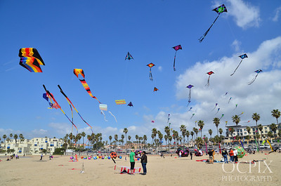 Kite Party in HB