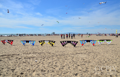 Revolution Kites at Kite Party 2014 in Huntington Beach