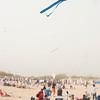 LR-Kites11-09607