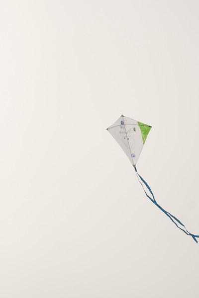 LR-Kites11-09519