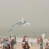 LR-Kites11-09618
