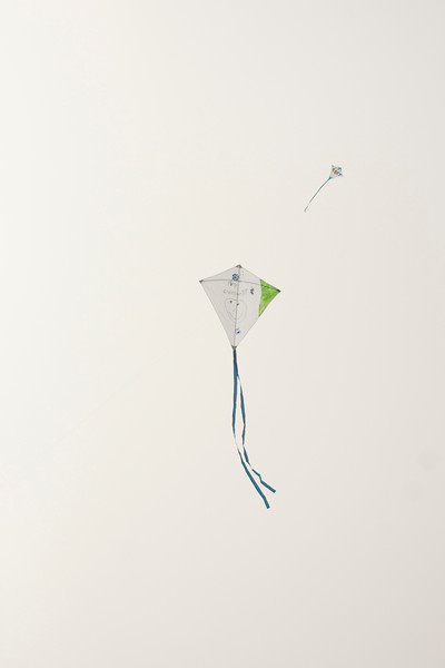LR-Kites11-09520