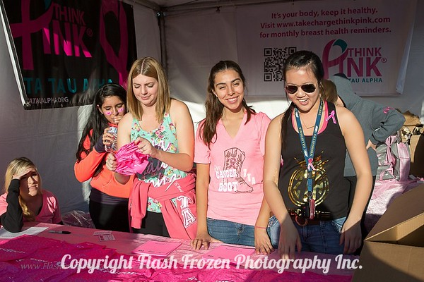 Flash Frozen Photo Komen Walk 2015-2