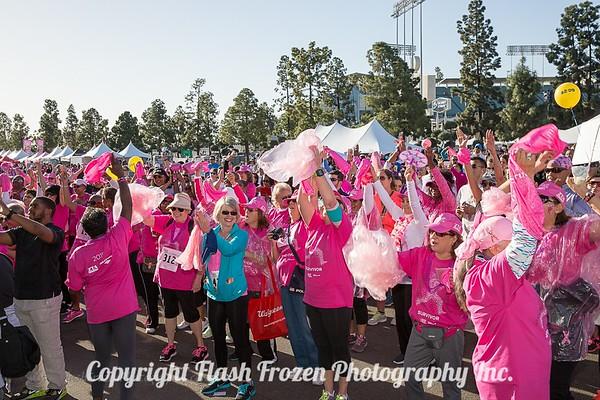 Flash Frozen Photo Komen Walk 2015-53