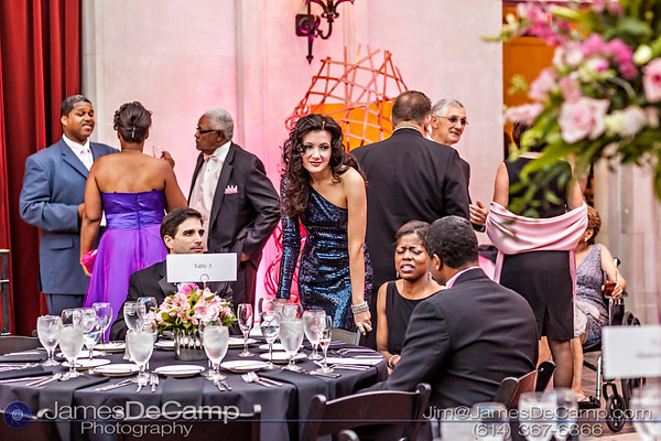 All proceeds from print sales to benefit The Cure.  The inaugural Komen Columbus Pink Tie Ball held Saturday September 8, 2012 at the Columbus Museum of Art.  (© James D. DeCamp | http://www.JamesDeCamp.com | 614-367-6366)