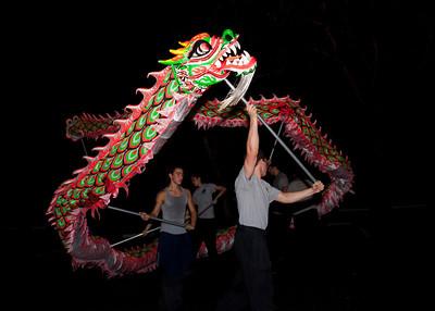 Chinese New Year 2013