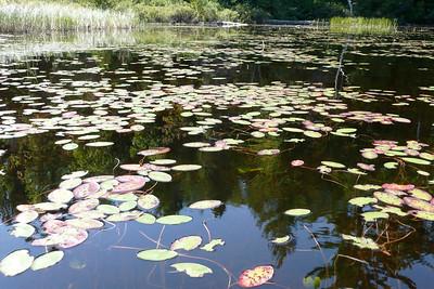 Lac Jean-Peré, La Vérendrye Wildlife Reserve