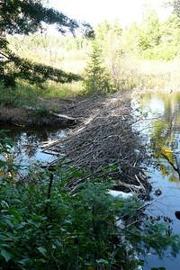 Beaver Dam on lac de la Voie, La Vérendrye Wildlife Reserve
