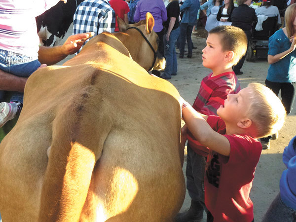 Debbie Wachter/NEWS<br /> A couple of young fairgoers pet a Jersey cow as it passes by en route to the milking parlor.