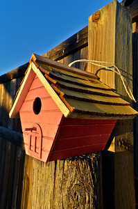 Birdhouse at sunrise