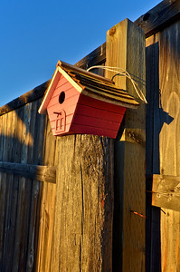 Bird house at sunrise
