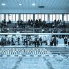 LC Swimming Alumni Meet 2013-9895