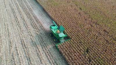 Harvest the Corn 01