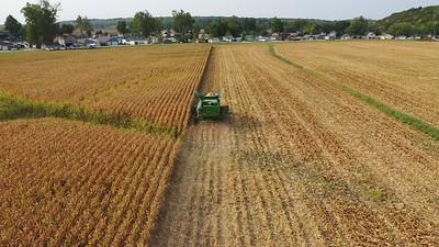 Harvest the Corn 02
