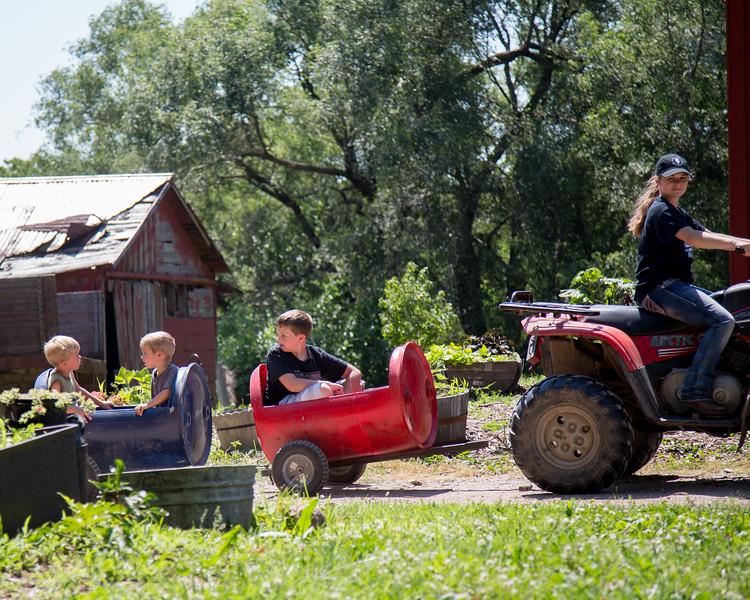 061117 Lamborn Farm-173_edited-1