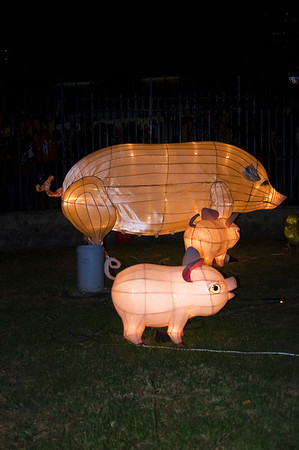 Pig and piglets Lantern Festival Albert Park Auckland New Zealand - 2 Mar 2007