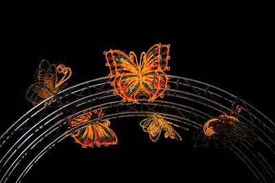 Butterflies Lantern Festival Albert Park Auckland New Zealand - 2 Mar 2007
