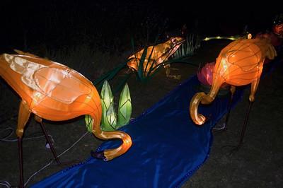 Flamingoes Lantern Festival Albert Park Auckland New Zealand - 2 Mar 2007