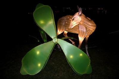 Lantern Festival Albert Park Auckland New Zealand - 2 Mar 2007