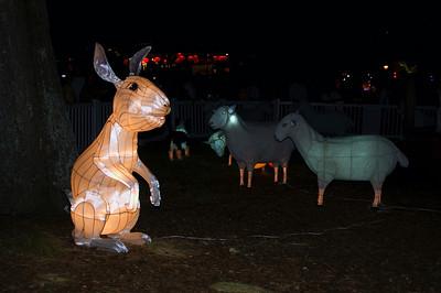 Bunny rabbit Lantern Festival Albert Park Auckland New Zealand - 2 Mar 2007